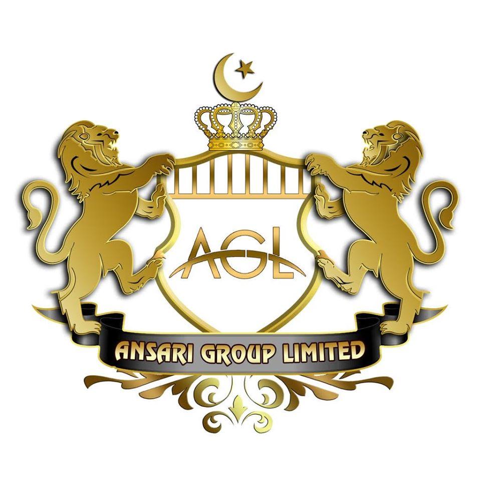 Ansari Groups Logo White