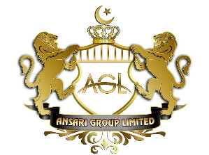 Ansari Group Limited Logo